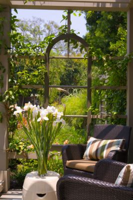 b-view-through-pergola-windowSM