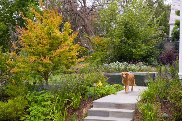 fountain-walk-garden-from-driveSM